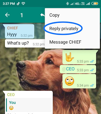 how to reply privately from WhatsApp group
