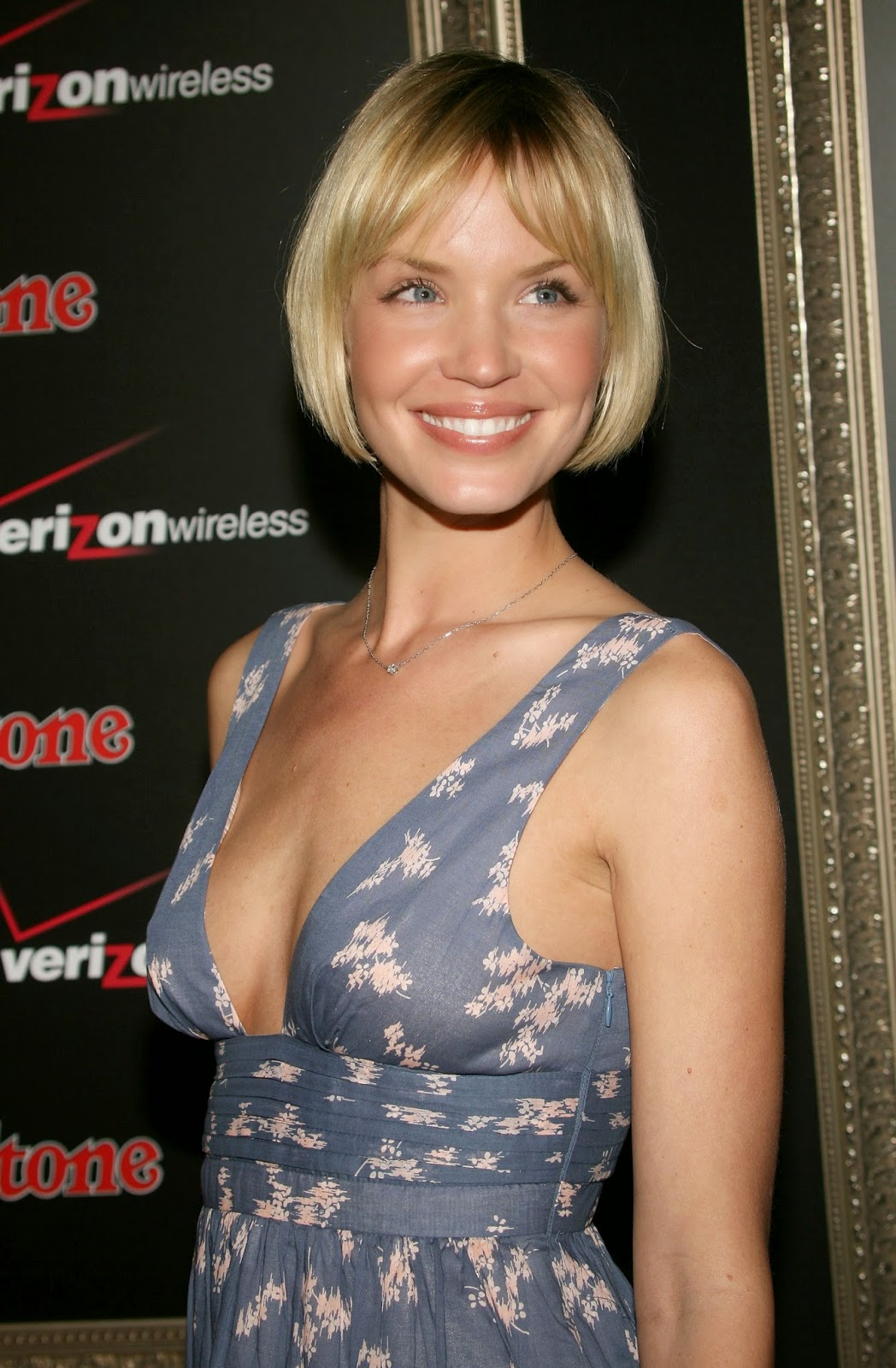 Free Download Hd Wallpapers Ashley Scott Free Wallpapers
