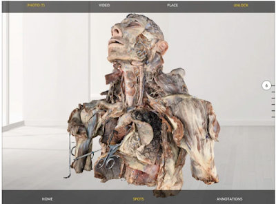 Dissection Master XR  app