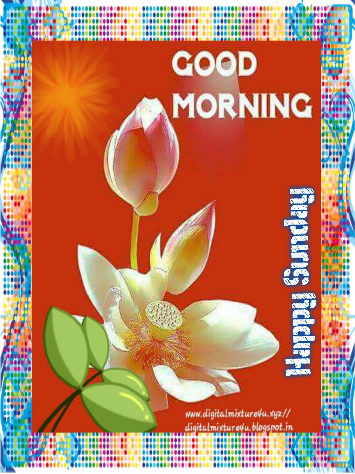 Happy Sunday Images Videos Telugu Movie News Bollywood Gossips