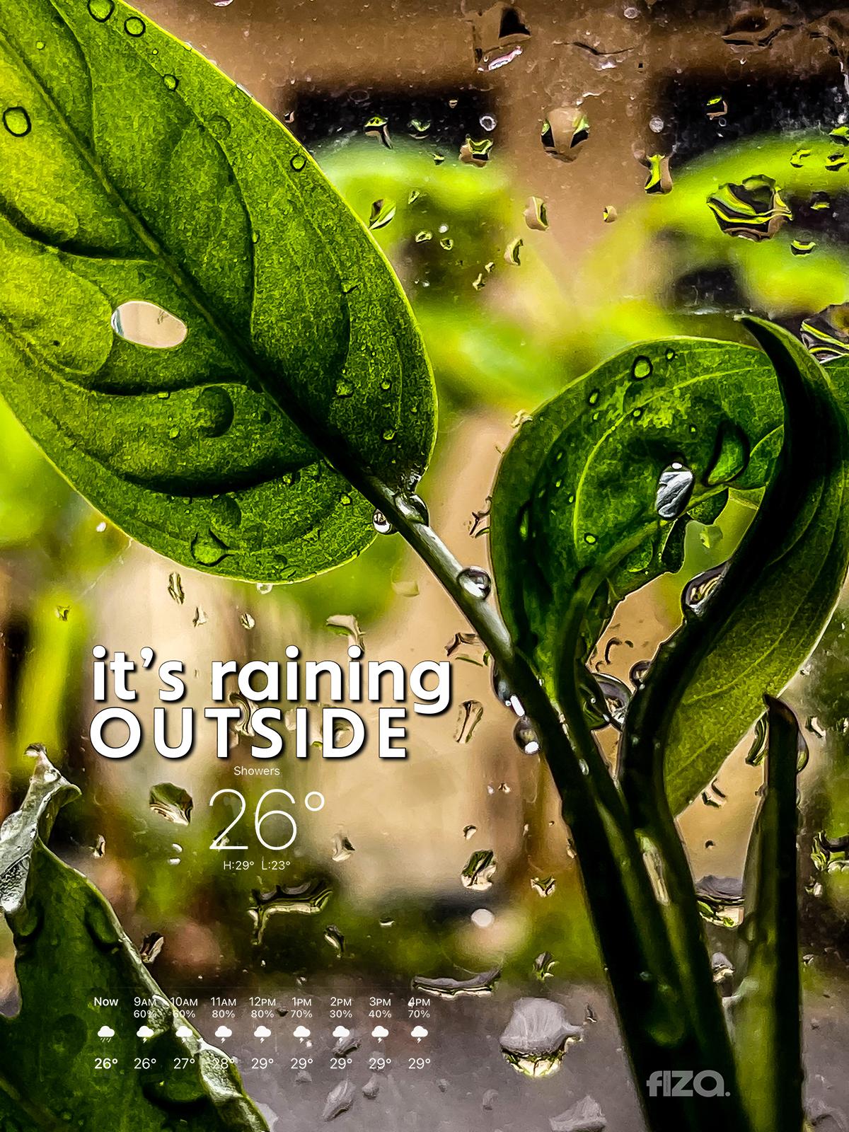 Hujan di Pagi hari