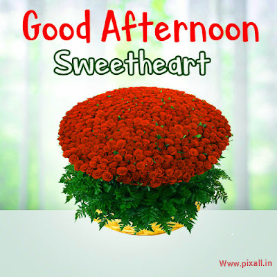 Best good afternoon picture free download| wishes imeges
