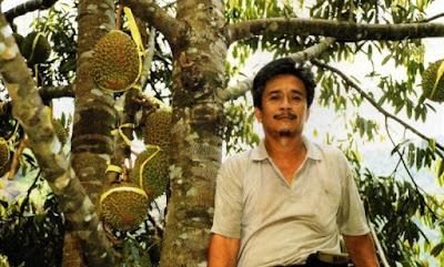 durian perwira