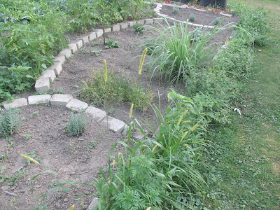 Herb garden-some herbs don't require as much water as others.