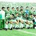 GRANEL: 22) Palmeiras 1993-1994