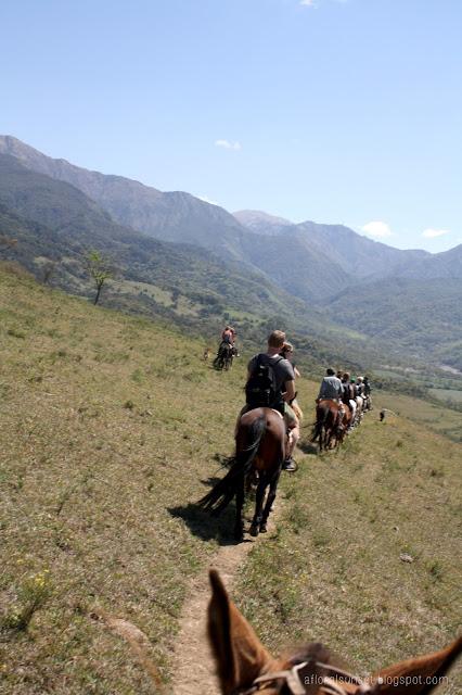 Argentina horseback riding