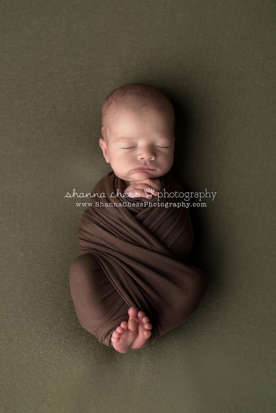 baby portraits eugene oregon