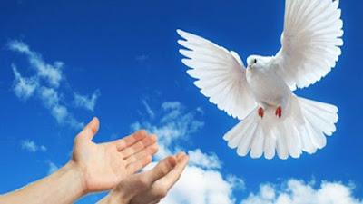 imagem do Espírito Santo em forma de pomba