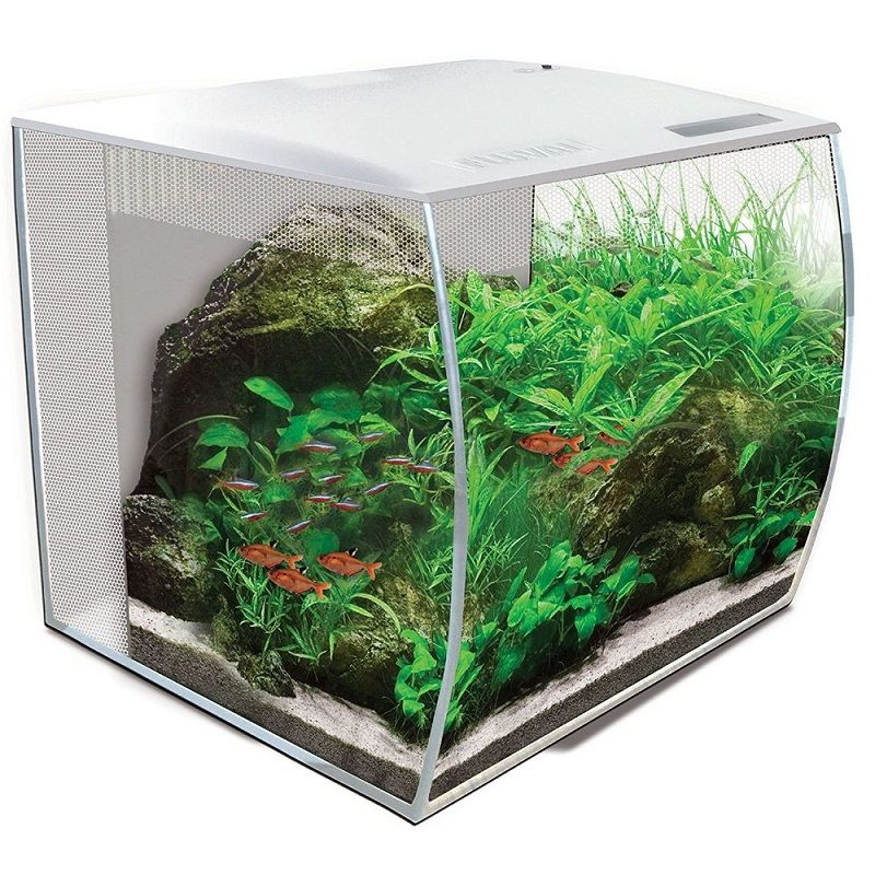 Betta Fish Tank Size - Fluval Flex 57 – 15 Gallon Nano Glass Aquarium Kit