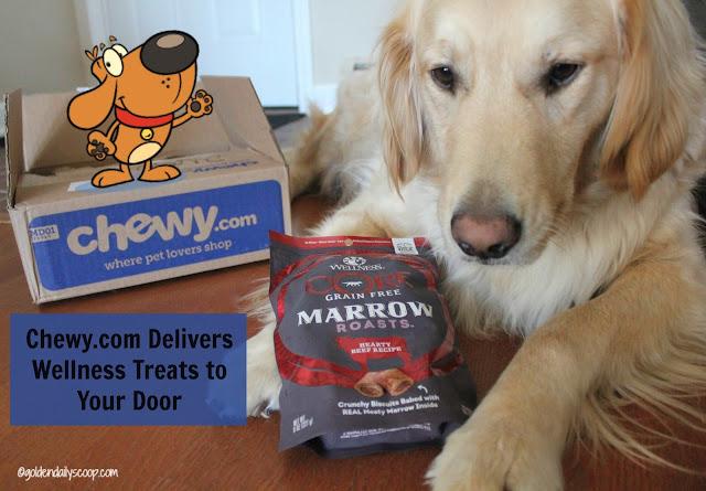 Wellness Core grain free marrow roasts dog treats