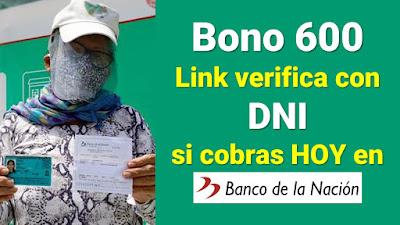 Bono 600: ¿Qué hogares pueden cobrar HOY? Verifica con DNI
