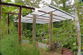 covered raised garden bed, Puriscal
