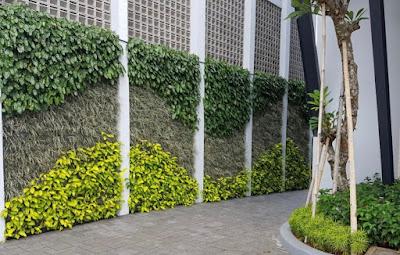 Jasa Pembuatan Vertical garden di Surabaya, Tukang Taman Vertikal di Surabaya