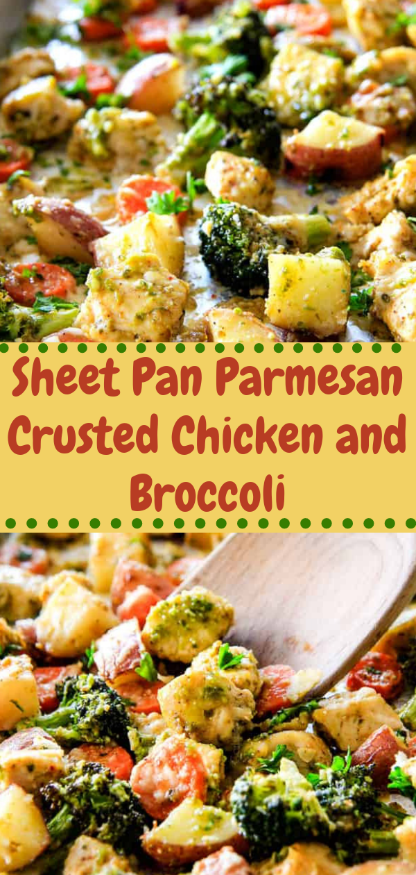 Healthy Recipes | Sheet Pan Parmesan Crusted Chicken and Broccoli, Healthy Recipes For Weight Loss, Healthy Recipes Easy, Healthy Recipes Dinner, Healthy Recipes Pasta, Healthy Recipes On A Budget, Healthy Recipes Breakfast, Healthy Recipes For Picky Eaters, Healthy Recipes Desserts, Healthy Recipes Clean, Healthy Recipes Snacks, Healthy Recipes Low Carb, Healthy Recipes Meal Prep, Healthy Recipes Vegetarian, Healthy Recipes Lunch, Healthy Recipes For Kids, Healthy Recipes Crock Pot, Healthy Recipes Videos, Healthy Recipes Weightloss, Healthy Recipes Chicken, Healthy Recipes Heart, Healthy Recipes For One, Healthy Recipes For Diabetics, Healthy Recipes Smoothies, Healthy Recipes For Two, Healthy Recipes Simple, Healthy Recipes For Teens, Healthy Recipes Protein, Healthy Recipes Vegan, Healthy Recipes For Family, Healthy Recipes Salad, Healthy Recipes Cheap, Healthy Recipes Shrimp, Healthy Recipes Paleo, Healthy Recipes Delicious, Healthy Recipes Gluten Free, Healthy Recipes Keto, Healthy Recipes Soup, Healthy Recipes Beef, Healthy Recipes Fish, Healthy Recipes Quick, Healthy Recipes For College Students, Healthy Recipes Slow Cooker, Healthy Recipes With Calories, Healthy Recipes For Pregnancy, Healthy Recipes For 2, Healthy Recipes Wraps, Healthy Recipes Yummy, Healthy Recipes Super, Healthy Recipes Best, Healthy Recipes For The Week,   #healthyrecipes #recipes #food #appetizers #dinner #sheet #parmesan #crusted #chicken #brocoli