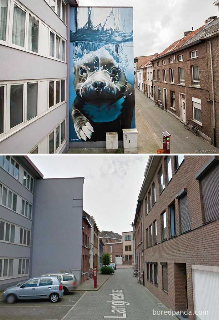 10+ Incredible Before & After Street Art Transformations That'll Make You Say Wow - Diving Dog Mural, Mechelen, Belgium