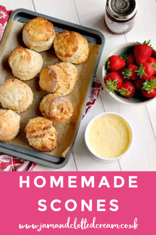 Homemade Cornish Scones with Jam and Clotted Cream #jamfirst #scones #cornishcreamtea #baking #easyrecipe
