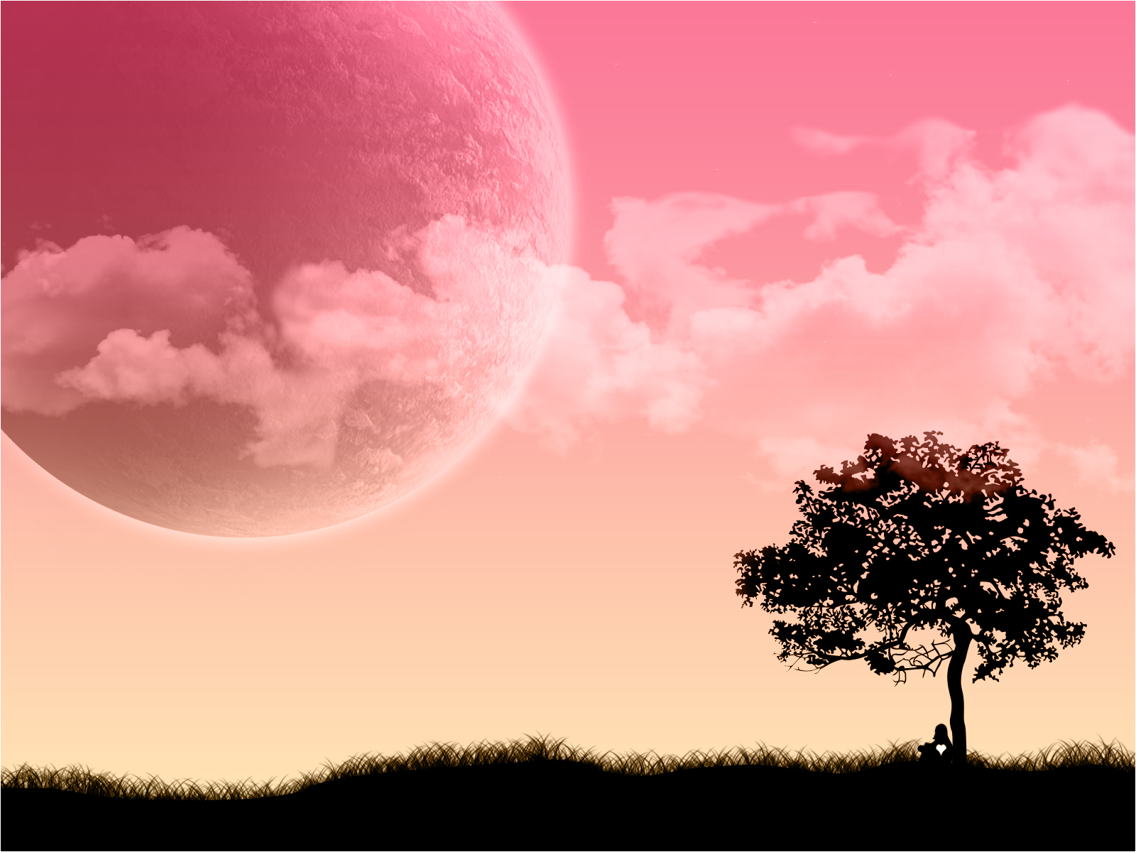 Pink And Black Wallpaper - HD Desktop Wallpapers
