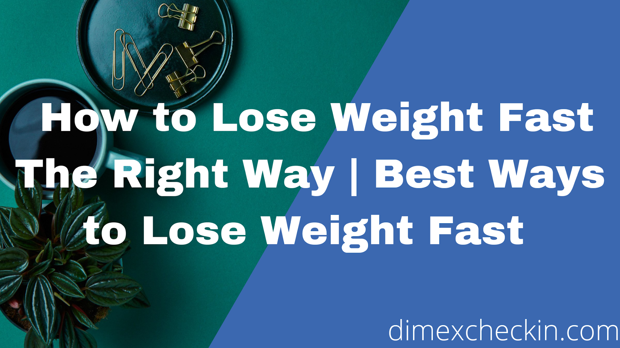 How to Lose Weight Fast The Right Way   Best Ways to Lose Weight Fast