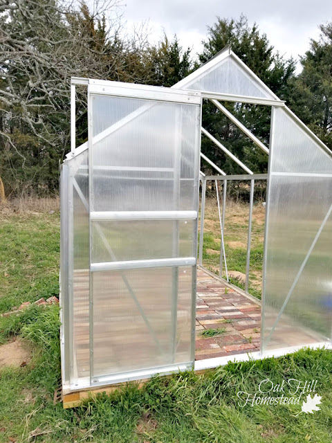 The open door of the little greenhouse, before the side panels were installed.