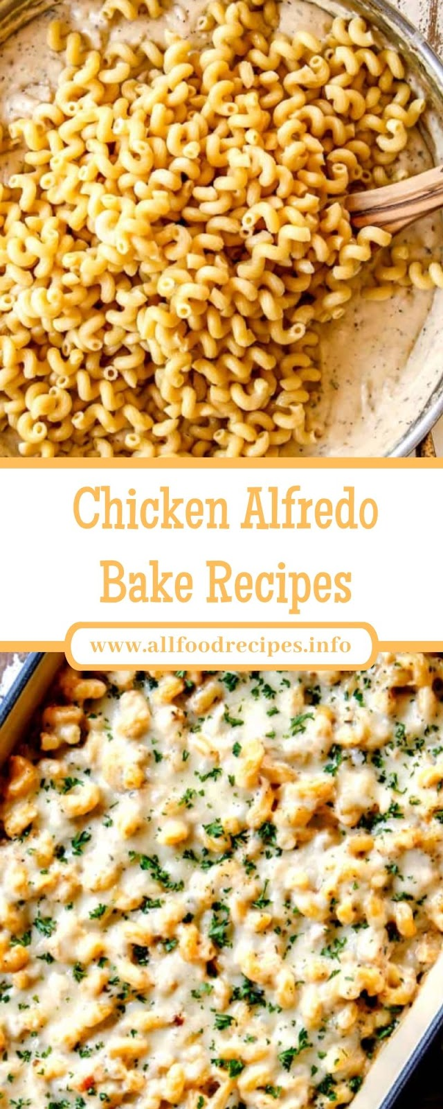 Chicken Alfredo Bake Recipes