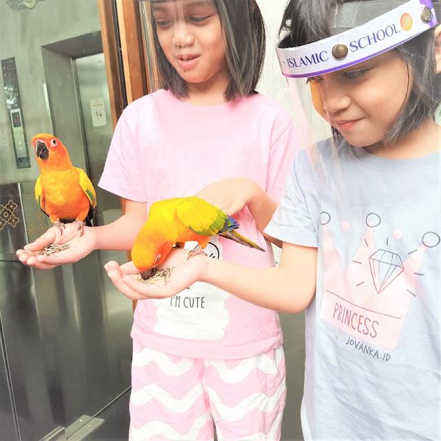 Aviary Bintaro