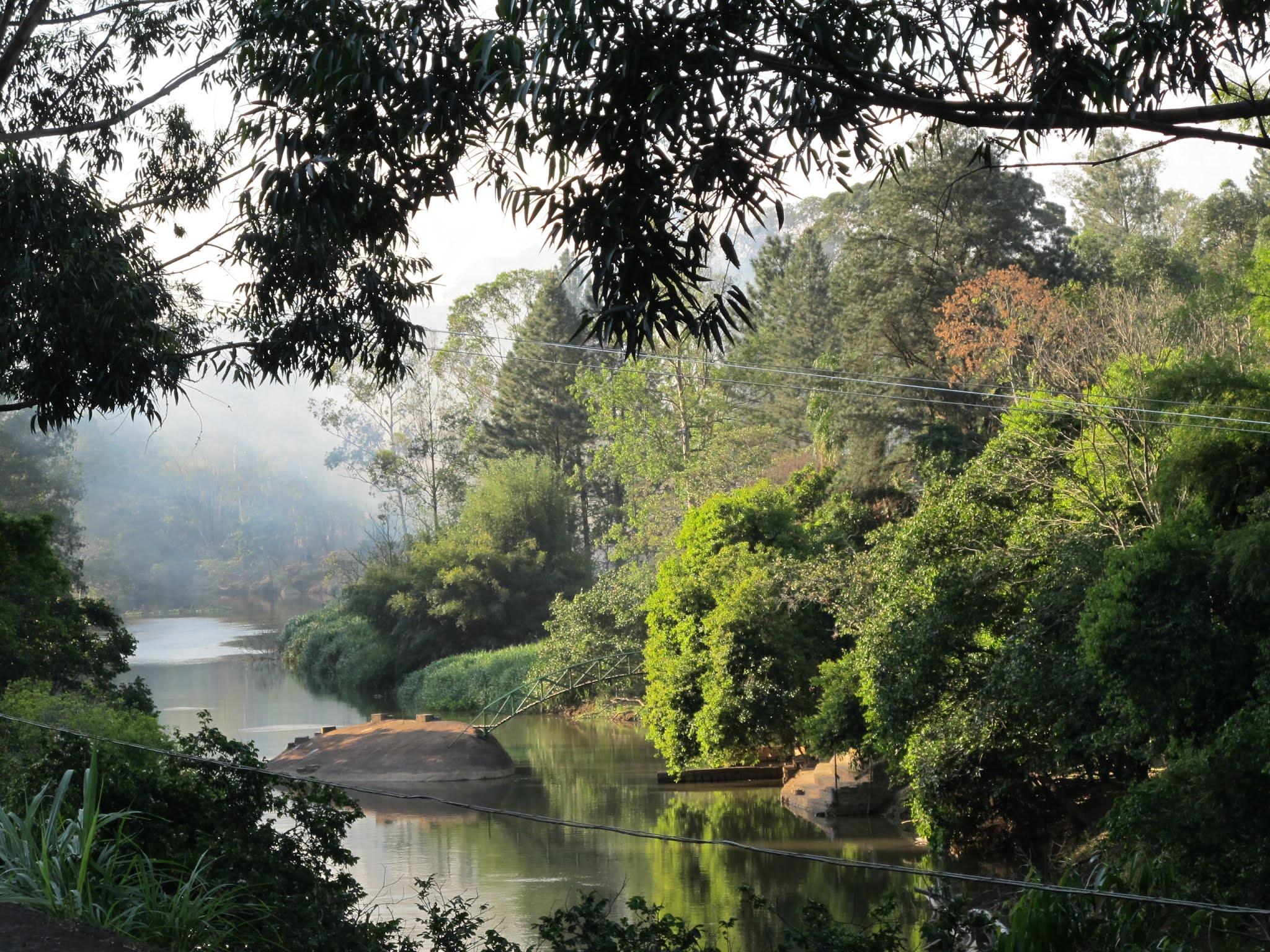 Área de Proteção Ambiental Joaquim Egídio