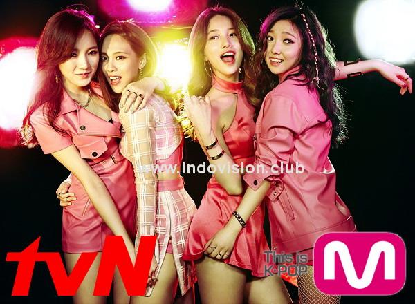 Jadwal tayang dan daftar acara tvN hari ini di Indovision.