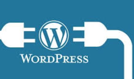 Fungsi Kata Kunci di SEO Wordpress