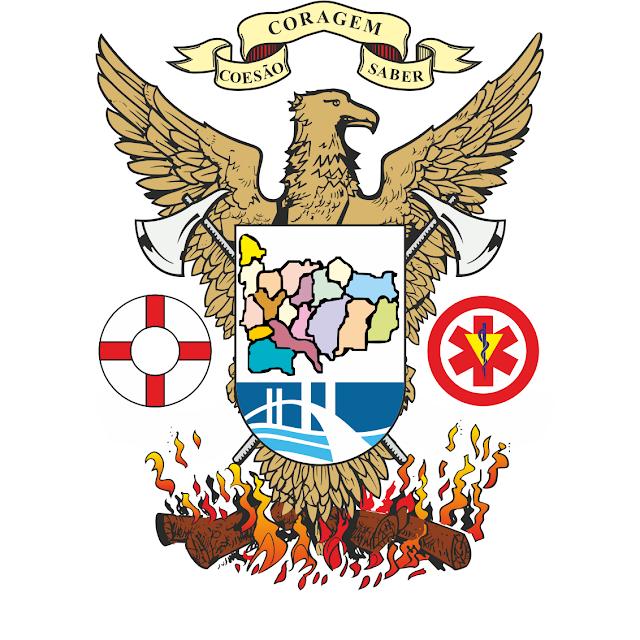 Federação dos Bombeiros do Distrito do Porto com Novo Site