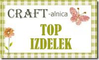 Avgust 2021 - TOP IZDELEK #290 izziva CRAFT-alnica