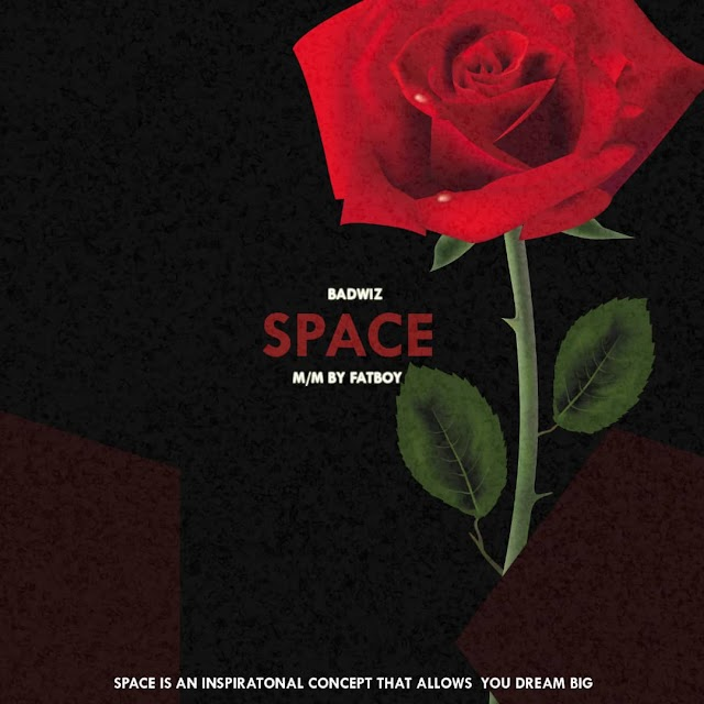 MUSIC : Badwiz - Space (mixed by fat boi)