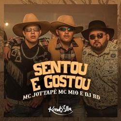 Baixar Sentou e Gostou - MC JottaPê e MC M10 e DJ RD Mp3