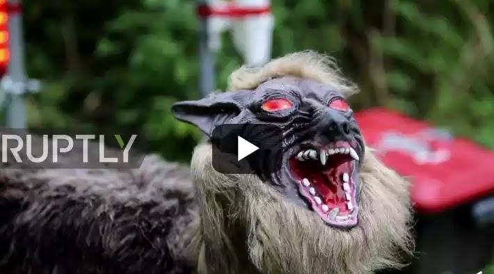 Ανατριχιαστικοί λύκοι - ρομπότ... με τρίχωμα θα προστατεύουν τις καλλιέργειες στην Ιαπωνία (βίντεο)