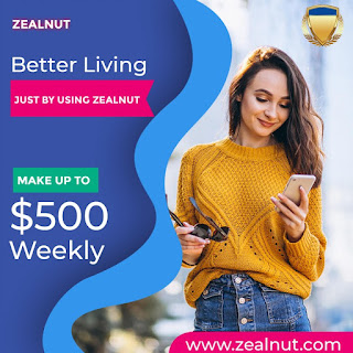 Zealnut Review: Earn as Much as $500 Socializing Every Day
