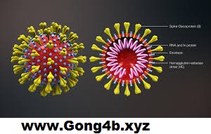 Coronavirus Vaccine: Medicine Found in China