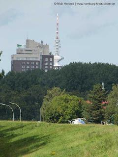 Blick zum Fersehturm von der Elbinsel Kaltehofe