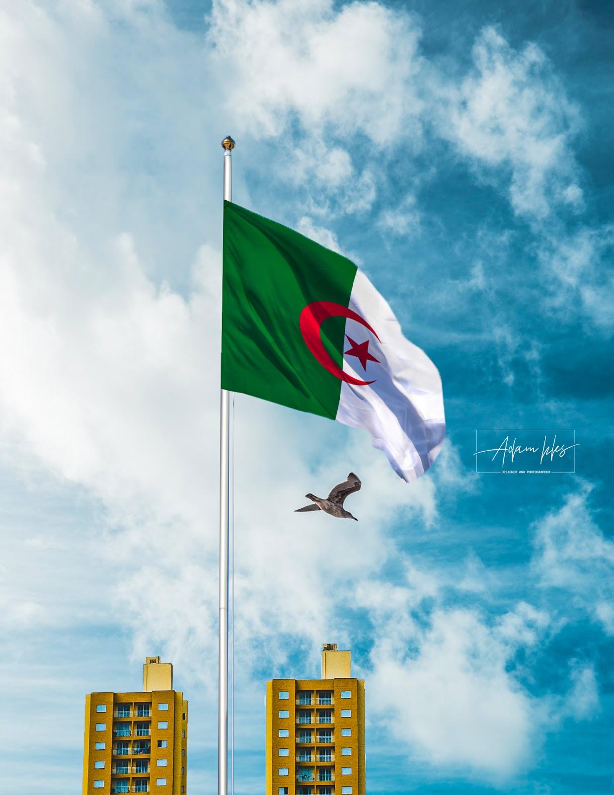 خلفية علم الجزائر