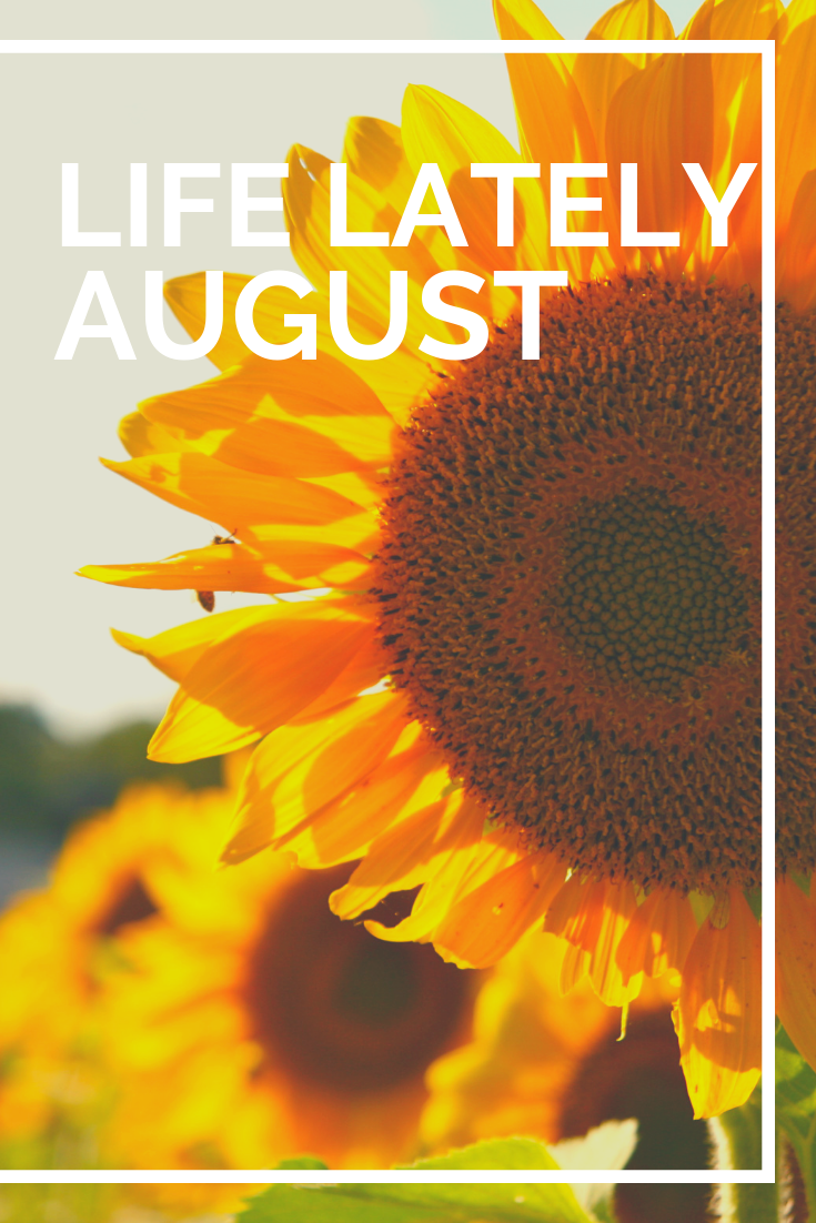 Life Lately | August