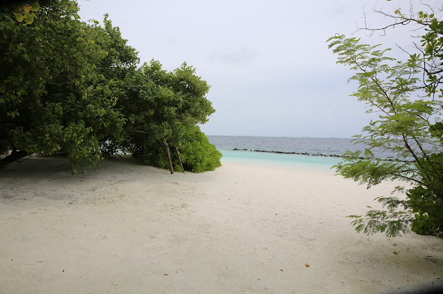 royal island resort maldives villa hotels atollo di baa
