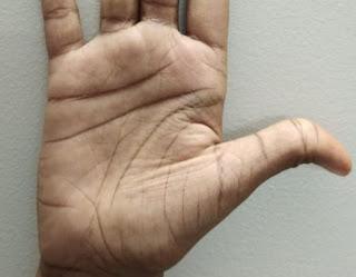 लचकदार अंगूठा हस्तरेखा (  Supple Thumb Palmistry )