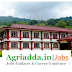 Young Professional-II Recruitment-M.Sc Ag. Horticulture/Plant Breeding