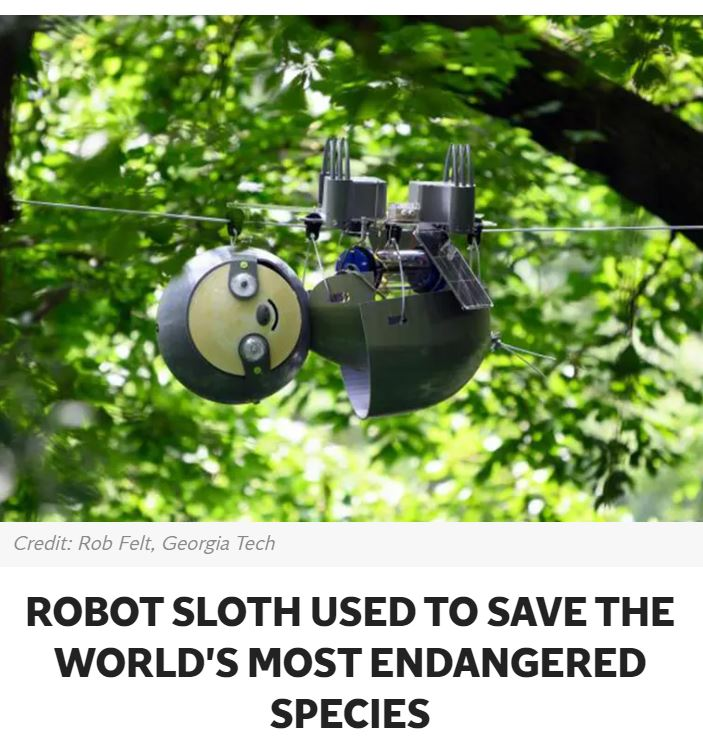 The sloth robot, called Slothbot, hangs in trees to monitor animals, plants, and the environment.