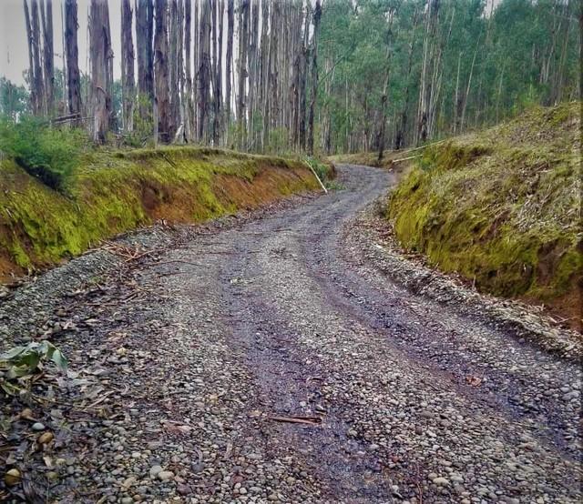 Adjudican obras de mejoramiento de camino a Purrehuin Alto
