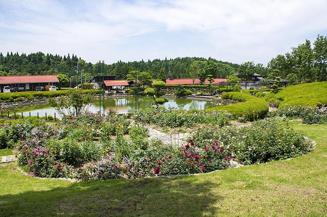 花の木農場の花壇2016年5月