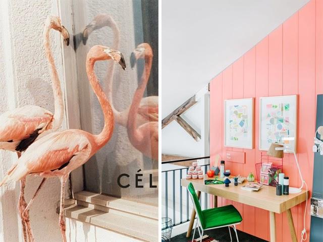 Flamingo tendances