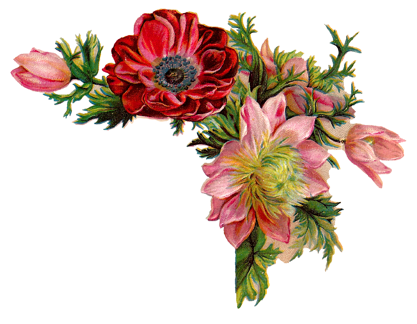 antique images free digital flower images of corner design with red and pink flowers paper clip art ideas paper clip art free