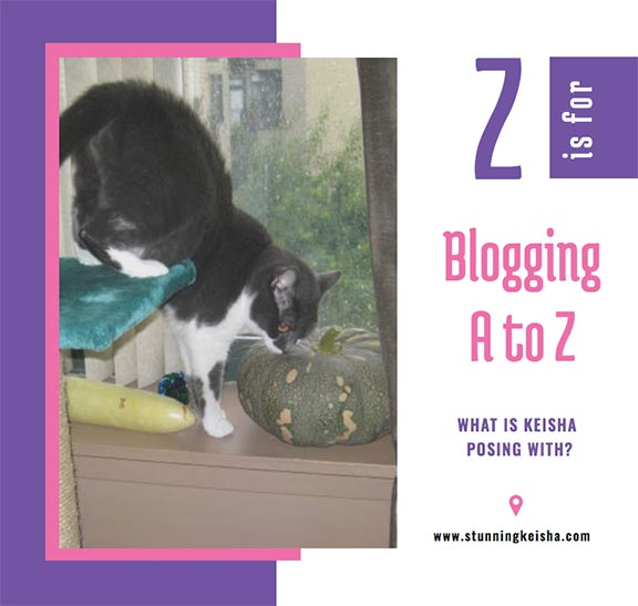 Blogging From A to Z: Z is for …