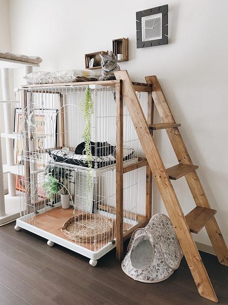 猫ケージ棚の完成品