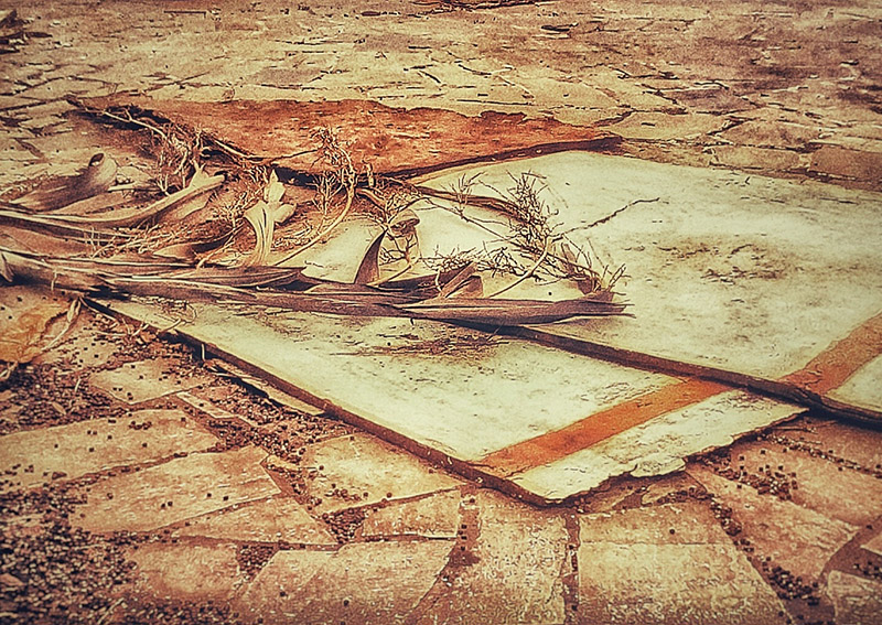 An almsot square photo, looking like a painting, of some old objects (an old white door and a thin curved branch) left in the center of the frame. A heavy desaurated brown and orange. 'Leftovers' by Kostas Gogas.