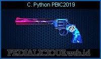 C. Python PBIC2019